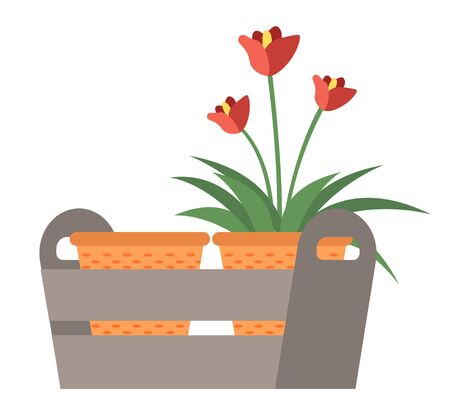 Flowering plant in pot, flowers decorations element of greenhouse, blossom and leaves, seedling sign, red petals, natural object, bloom and growing vector Illustration