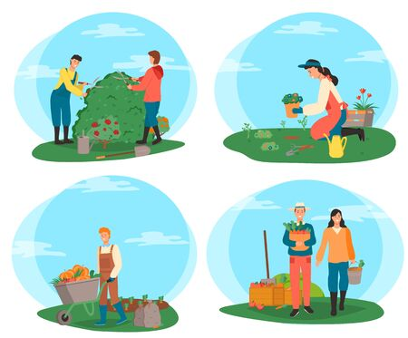 Man and woman with vegetables vector, harvesting people with basket veggies, gardeners cutting bushes, person with pumpkins in carriage, flowers plantation