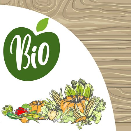 Natural products vector, bio food harvesting banner, corn and pepper, foliage and carrot pumpkin and onion meal fresh harvest organic fruits veggies. Logo for menu of bio products on wood background