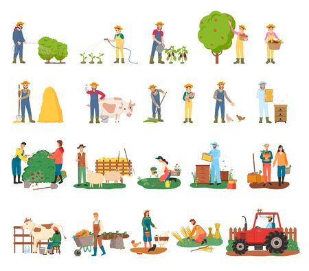 Man spraying bushes vector, woman gathering fruits from tree, harvesting and beekeeping, sheep and cow, harvest on plantation and tractor machinery. Farmers on farm