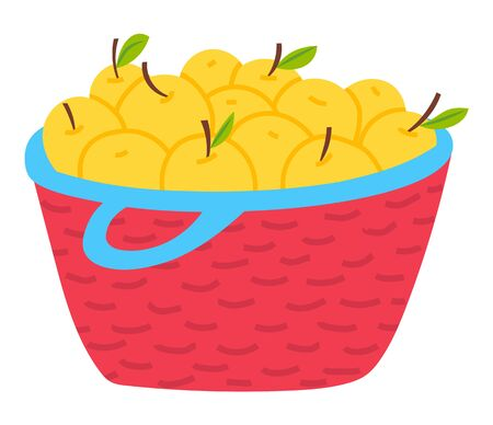 Yellow apples in basket isolated vegetarian food. Vector harvest of fruits in wicker container, wooden pottle with handle. Agriculture, ripe seasonal product