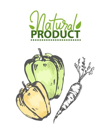 Natural product vector, paprika and carrot with foliage drawing, bell pepper monochrome sketch and logotype of ecologically clean meal, eco veggies 일러스트