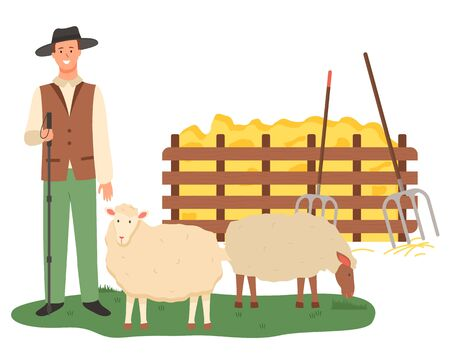Farmer with sheep vector, male caring for animals flat style. Wooden fence with dried glass straw and hay with tools, instrument hayfork harvesting