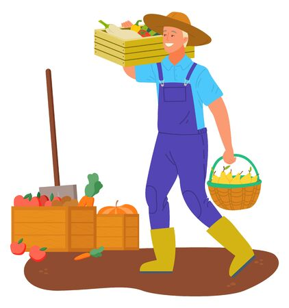 Person on plantation vector, isolated man carrying box with aubergine and carrot. Shovel and wooden containers for harvested food vegetables flat style