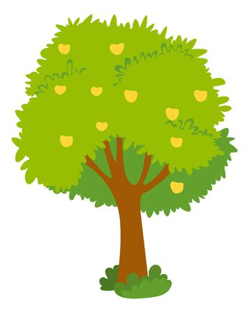 Apple tree with yellow fruits on green crown isolated. Vector ripe healthy desserts grown on plant, autumn harvest or crop of healthy organic food