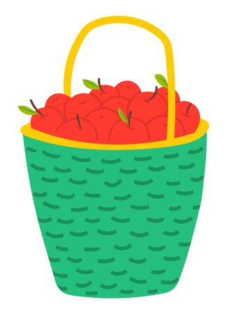 Red apples in basket, agriculture theme concept. Vector ripe fruits, seasonal delicious product, gardening harvest in wicker container, wooden pottle with handle