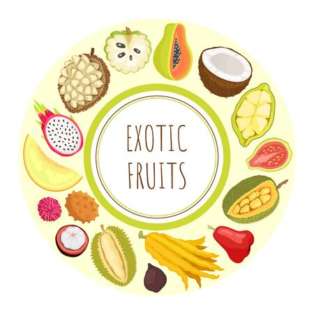 Exotic fruits durian and sugar apple vector. Guava and citron, lychee and rambutan, marang and pitaya, coconut and cupuacu organic food tropical meal 向量圖像