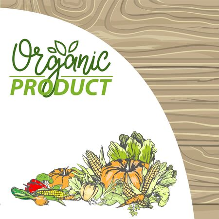 Natural products vector, bio food harvesting banner, corn and pepper, foliage and carrot pumpkin and onion meal fresh harvest organic fruits veggies. menu of bio products on wood background
