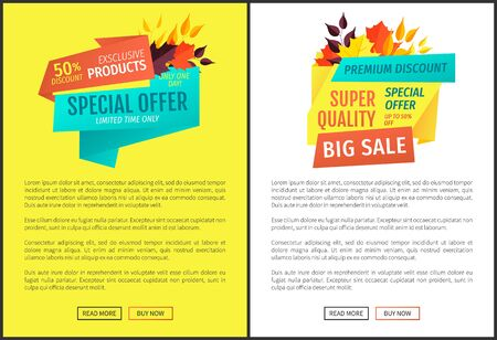 Special offer big sale posters with text sample limited time only. Exclusive natural products reduction of cost price. Autumnal offer of shops vector
