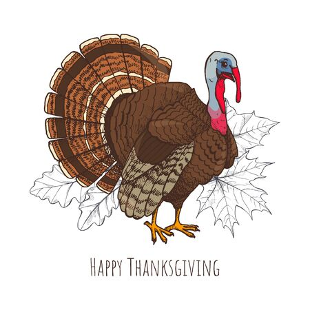 Happy Thanksgiving day with turkey, poster and greeting text vector. Leaves and maple foliage monochrome sketches outline, domestic animal mascot