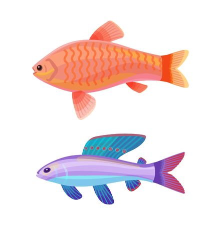 Aquarium goldfish with comet-like tail and unusual blue creature with red spotted dorsal fin cartoon vector illustration. Colorful depiction on white. Illustration
