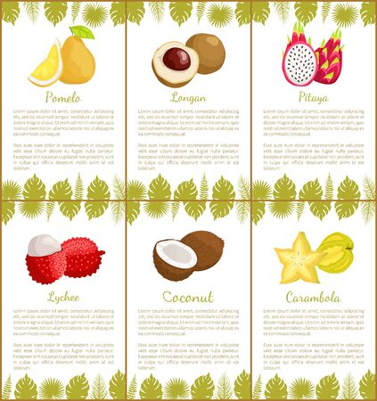 Pomelo and longan, pitaya and rambutan, coconut and carambola star set of posters. Text sample and decoration monstera leaves fruits set vector