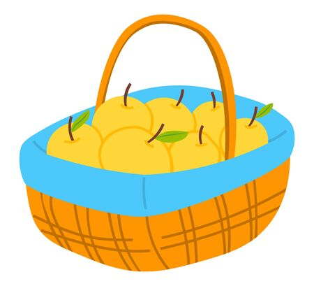 Harvest apples with leaves in wicker basket, wooden pottle with handle. Agricultural element, ripe fruit, seasonal delicious product, gardening vector