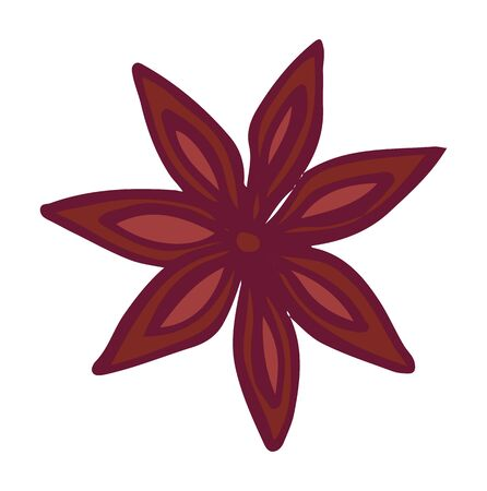 Cinnamon or aroma flower, anise star coffee shop, java aromatic ingredient. Flavor enhancer, brown petals, tasty blossom, canella in flat design style vector