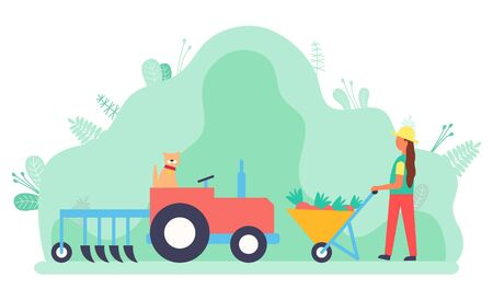 Woman working on field vector, lady with carriage and carrots. Tractor used in agriculture, rancher busy with agricultural job. Machinery for farm. Flat cartoon