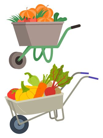 Carriage in farming vector, isolated set of carts loaded with vegetables. Pepper and carrots, beetroot and paprika pumpkin. Harvesting season flat style Stock Illustratie