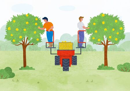 Farmers working in garden vector, man picking apples standing on lifting machine with box for production. Farmers by trees, yard with greenery lawn. Special harvest platform for picking apples. Flat cartoon Illustration