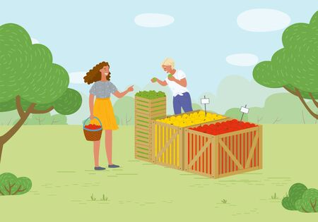 Woman buying products in market vector, summer fair with organic food and meal. Fruits from farmers, salesperson with juicy vegetarian snacks flat style. Picking apple concept. Flat cartoon