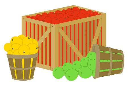 Apple fruits in box wooden container for transportation vector, isolated basket with yellow and green products. Organic food, harvesting season flat style. Picking apple concept. Flat cartoon