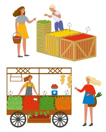 Woman buying food at market vector, isolated set of sellers and clients. Organic food and fruits. Cucumbers and carrots, tomatoes and vegetables in boxes. Pick apples concept. Flat cartoon