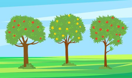 Summer garden with fruits vector, harvesting season. Apples growing on trees, red and yellow color. Landscape greenery of nature, natural production. Pick apples concept. Flat cartoon Фото со стока - 129655777