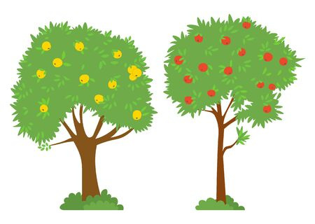 Harvesting vector, isolated trees red and yellow apples. Garden with plants and bushes, foliage and branches. Summer or autumn season picking fruits outside. Picking apples concept. Flat cartoon Фото со стока - 129655789