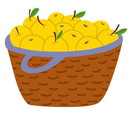 Wicker straw basket full of yellow apples with leaves isolated on white background. Fresh and ripe fruits autumn garden harvest vector illustration. Pick apples concept. Flat cartoon Иллюстрация