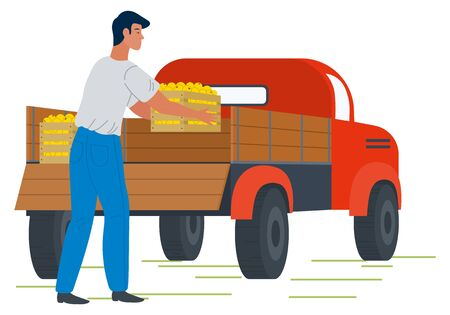 Farmer character holding wooden box with ripe apples, back view of male with box. Picking fresh product, agricultural work, transportation symbol vector. Picking apple concept. Flat cartoon