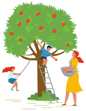 Woman adding fruit in apron, boy on stairs picking apples from green tree. Girl on handmade swing, people gardening, orchard element, countryside vector. Picking apples concept. Flat cartoon Фото со стока - 129655875