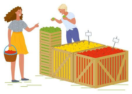 Female character vector, isolated woman with basket buying food from store. Salesperson with different kinds of apples, fruits organic production. Picking apples concept. Flat cartoon
