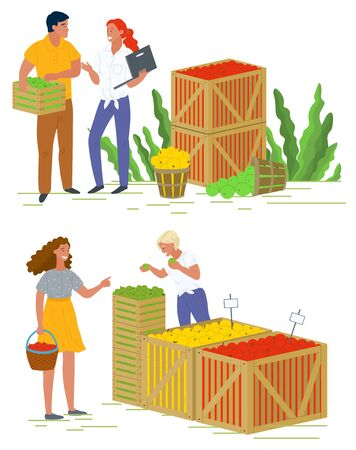 Seller with picking fruit, shopping apples, harvesting product in container. People buying vegetarian food, business and retail, agricultural work vector. Picking apple concept. Flat cartoon Çizim