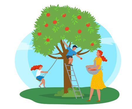 Rural area vector, farming woman with basket picking apples in garden. Playing kids family leisure, daughter and son of mother smiling character working. Pick apples concept. Flat cartoon