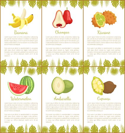 Banana and chompoo poster set with text sample and leaves of tropical plants. Watermelon kiwano and cupuacu, ambarella organic meal vector juicy food Foto de archivo - 131316198