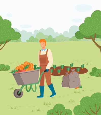 Farmer with harvest in metal wheelbarrow. Man with cart of fresh ripe vegetables such as carrot, pumpkin, tomatoes, grown on garden bed. Vector illustration in flat cartoon style 向量圖像