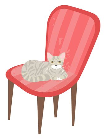 Kitten relaxing on soft pink armchair vector, isolated kitty on chair grey purring pet in home. Stool with fabric designed in vintage style pouffe