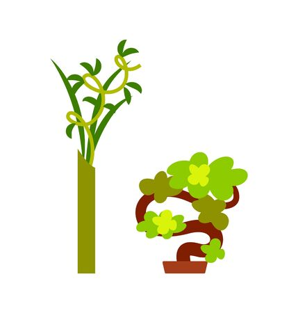 Green plant in vase and small decorative tree, convoluted branches with leaves and winding wood, bright natural symbol. Element of interior on white vector