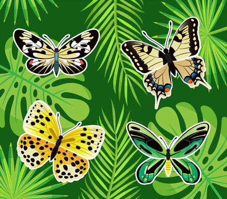 Butterflies tropical creatures vector, insects of different color. Exotic leaves of palm tree and monstera plant. Nature and natural flora and fauna
