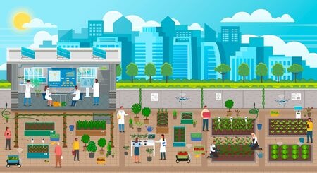Scientists growing plants in city, urban agriculture in town with developed infrastructure. Farming and new crops engineering. Farmers using energy produced by solar panels in urban gardening, vector