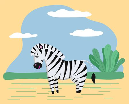 Zebra stand in safari or savanna. Wild character in wilderness or zoo. Animal use black and white striped coat as camouflage. Nature, landscape with spruces and sand. Vector illustration in flat style