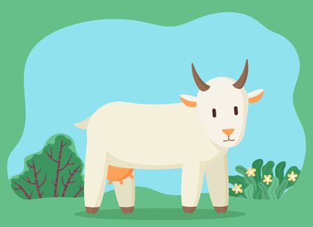 Goat with horns and udder pasturing on green grass in countryside. Cattle cartoon character standing near bush and flowers plants outdoor. Wildlife animal walking on meadow in summer season vector