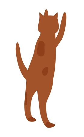 Cat jumping and begging food from owner. Spotted ruddy or brown pet isolated on white background. Funny little kitten stand on back legs. Vector illustration of domestic animal in flat style