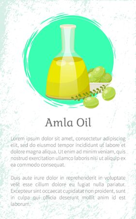 Glass vessel contains liquid inside, amla oil. Indian gooseberries and branch with leaves near glassware. Green small berries near bottle. Space for information about product. Vector illustration Ilustracja
