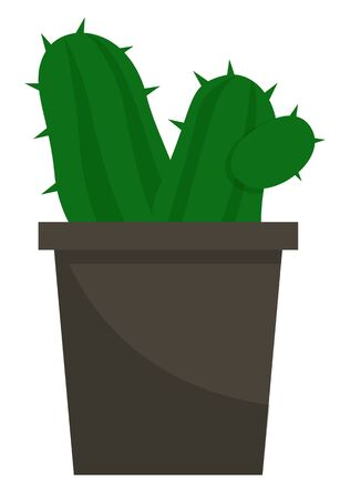 Evergreen plant with prickly thorns in black pot. Succulent that grown indoor in potting soil. Isolated object for house and office decoration. Vector illustration of potted houseplant in flat style Illusztráció