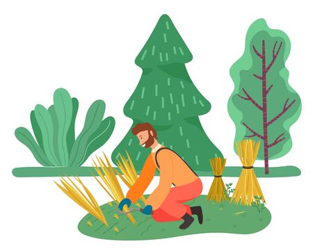 Farming male character working on field with hands. Harvesting season on farm, man cutting wheat wearing protective gloves. Farmer using tools to cope with dry grass. Vector in flat style illustration Illustration