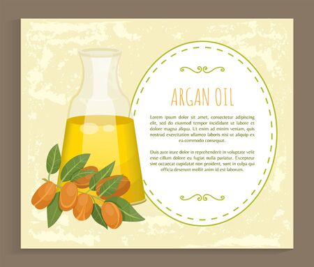 Glass bottle contains golden liquid inside. Branch with brown nuts of argania. Text, information about argan oil in vessel. Product used in beauty industry like for hair care. Vector illustration