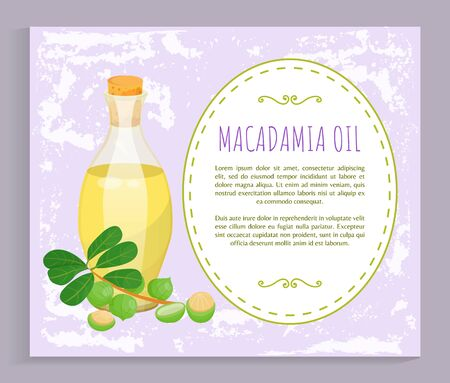 Glass bottle with liquid inside and closed with bung. Branch with green leaves and maroochi plant. Space with information about natural oil made from macadamia nuts. Vector illustration in flat style