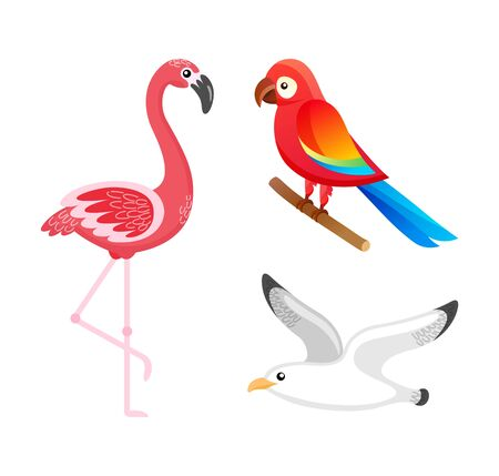 Flying tropical birds vector, isolated flamingo with pink feathers, parrot sitting on stick and seagull. Animals with plumage living in tropics flat style