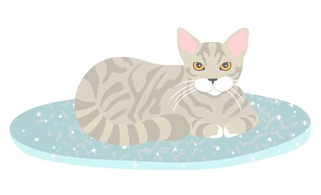 Grey striped cat lying on blue rug with star pattern isolated on white. Fluffy, furry pet resting , Sweet home concept flat cartoon vector illustration Ilustração