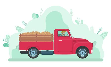 Man driving lorry with potato harvest on road in countryside. Farmer in red big car with vegetables on hindcarriage. Plants with stem and leaves, green abstract background. Vector in flat style