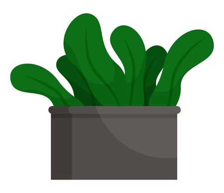 Plant big leaves in flowerpot isolated on white. Tropical element of indoor decoration buds in pot symbol. Gardening potted object for interior of room. Houseplant sign in cartoon style vector Ilustrace